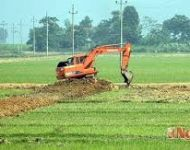 Chuyển từ đất trồng lúa sang làm trang trại có phải xin phép không?