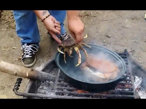 Cách câu cua biển hiệu quả và nấu ăn ngay tại chỗ