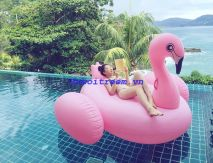 Phao bơi chim hồng hạc khổng lồ