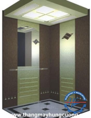 mẫu cabin thang máy 5
