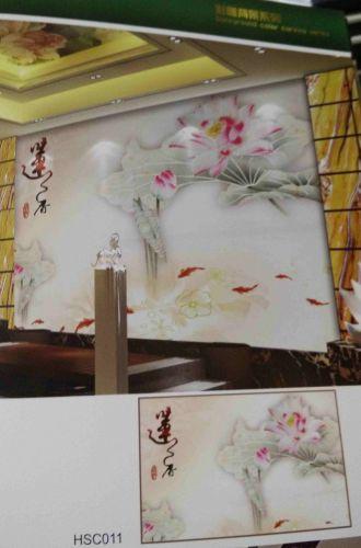 Gạch 3d trang trí phòng khách HSC011