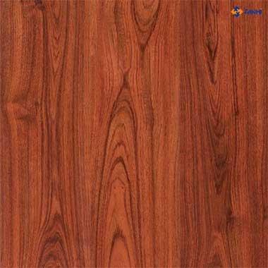 Sàn gỗ chịu nước JANMI T11 (8mm)