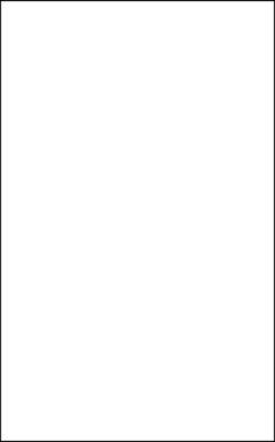 Gạch ốp Prime 25x40 2210
